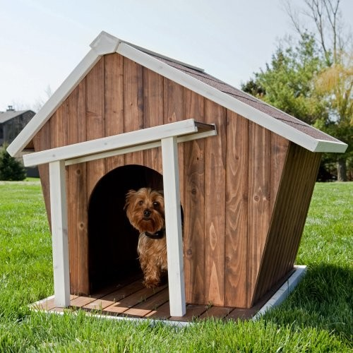 dog house or shed