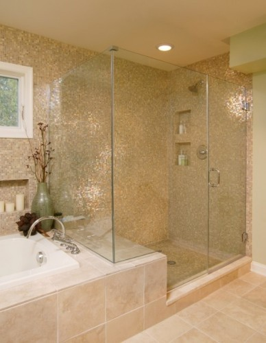 Frameless Shower Door traditional-shower-doors