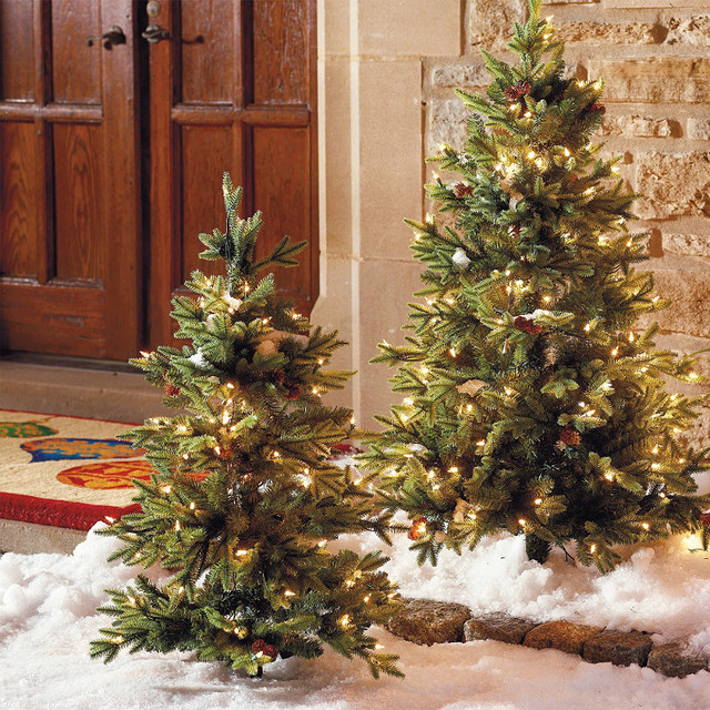 Set of Two 3' Hyde Park Pathway Outdoor Christmas Trees - Frontgate Christmas De traditional-holiday-decorations