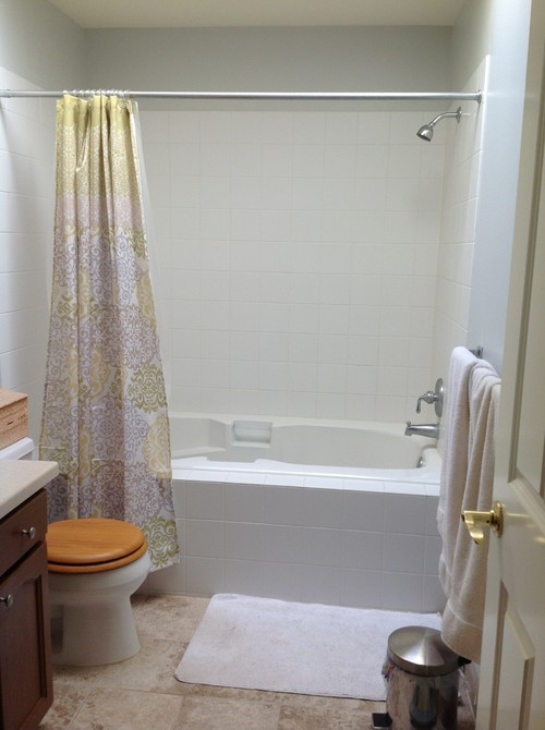 Shower Doors Or Curtain