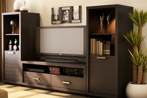 Modern Entertainment Center Ideas-st.houzz.com