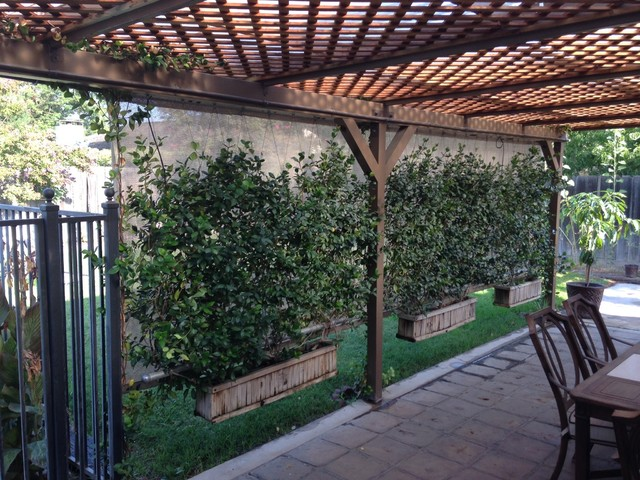 hanging garden trellis rustic screens and room