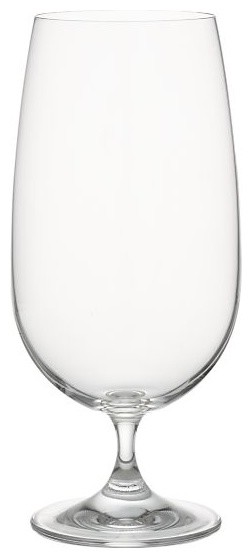 Jane Water Goblet contemporary-everyday-glasses