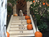 home design Low Boo Halloween Décor for the Little Ones (7 photos)