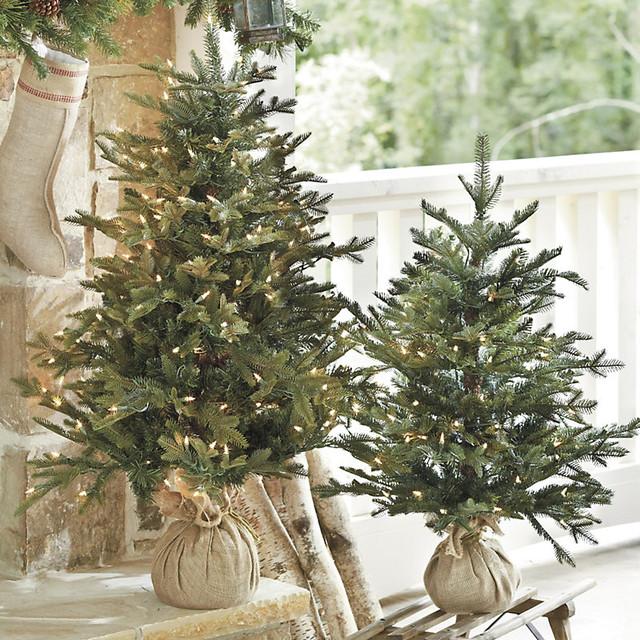 ... Fir Tabletop Tree - Traditional - Christmas Trees - by Ballard Designs