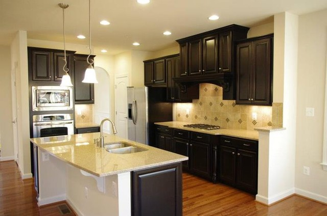 Dark cabinetry kitchen design for Traditional dark kitchen cabinets