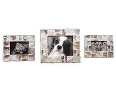 Capiz Photo Frames Set of 3 traditional-picture-frames