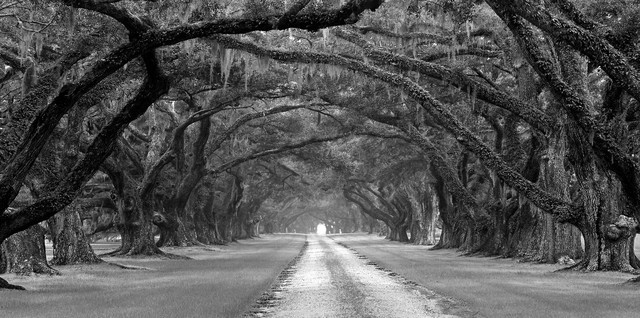 The Road To... traditional-home-decor