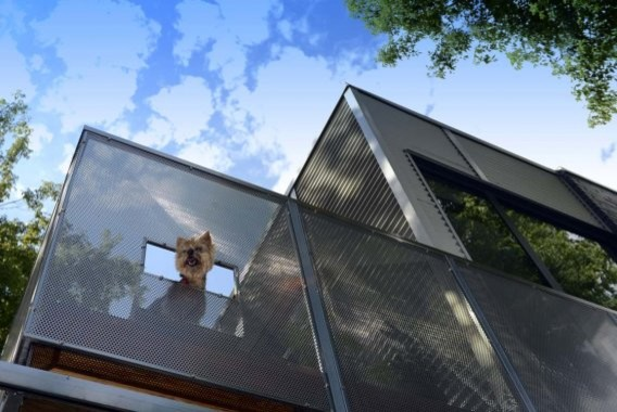 Plateau Mont-Royal Addition No.2 contemporary-patio