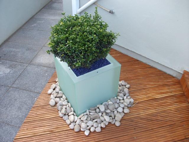 Garden boutique contemporary
