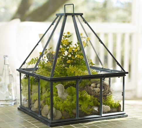 Tabletop Greenhouse Eclectic Indoor Pots And Planters