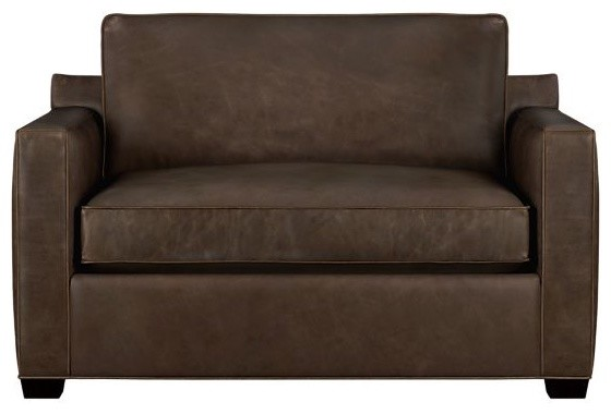 Davis Leather Twin Sleeper Sofa Scifihitscom