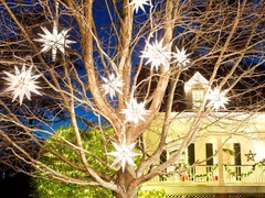 Outdoor Christmas Lights : Decorating : Home & Garden Television