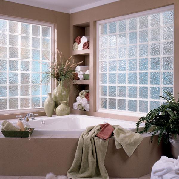 Privacy Windows contemporary-windows