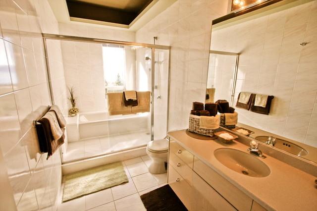 Tahoe Hill traditional-bathroom