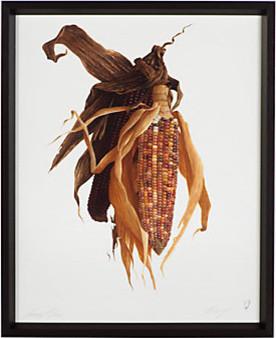 Maize - James Linton Sain modern-artwork