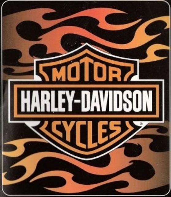 Harley Davidson Logo Throw Blanket Horizontal Flames - Traditional - Throws - by Zeckos