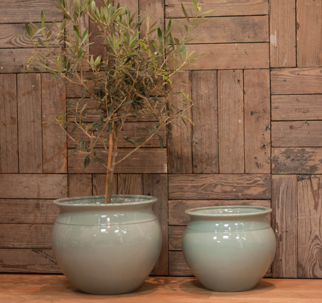 Cache Pot and Indoor Plante, Duck Egg Blue traditional-indoor-pots-and-planters
