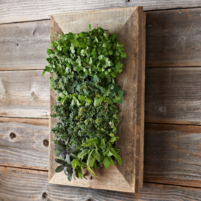 Reclaimed Wood Wall Planter Contemporary Outdoor Pots
