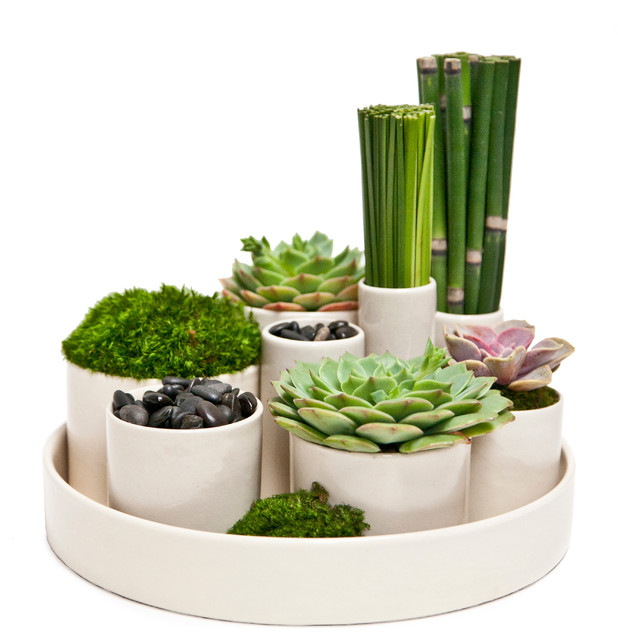 Zen garden modern home decor los angeles by floral for Modern home decor accessories