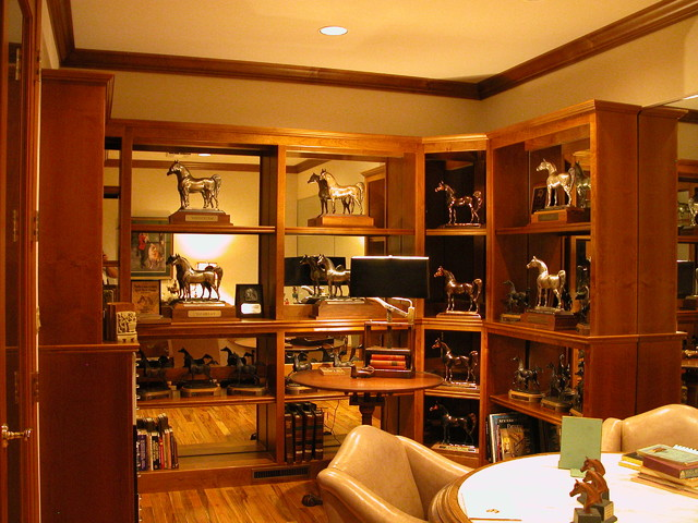 Home Offices & Libraries - Traditional - Display And Wall Shelves - other metro - by Unique ...