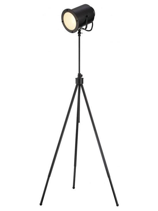 Joshua Marshal - Metal Floor Lamp Dark Bronze E27 Cfl 23W - Finish: Dark Bronze