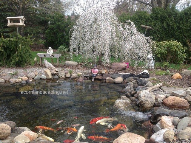 Ecosystem pond maintenace spring pond or water garden for Garden pool ecosystem