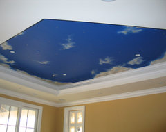 Ceiling mural night sky contemporary