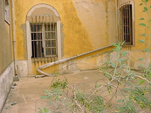 "Casadecor Algarve - Portugal - ""Before and after"" contemporary-patio"