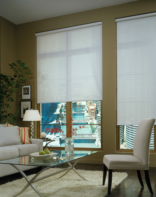 Roller Shade Modern Living Room White Green Apartment Contemporary Roller Shades