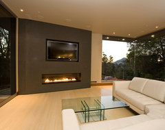 Spark Modern Fires contemporary-indoor-fireplaces