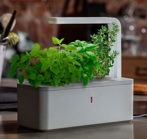 Click Grow Smart Herb Garden Contemporary Indoor Pots And Planters By Kickstarter
