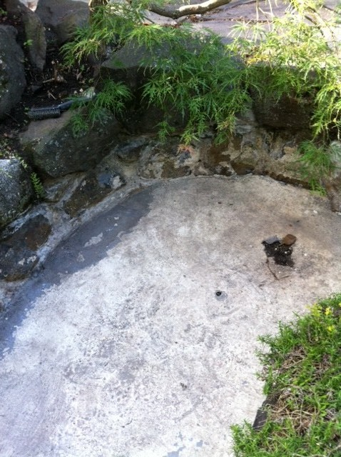 Rehabbing stone concrete pond what next for Concrete pond design