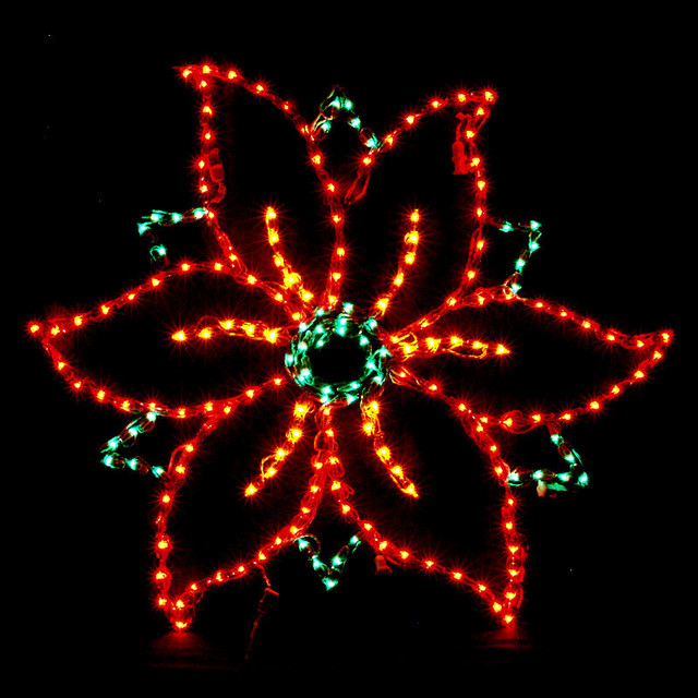 Lighted Poinsettia Outdoor Display Traditional