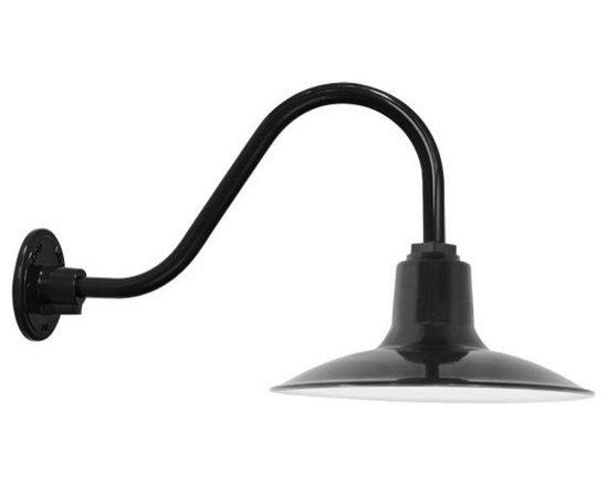 District Gooseneck Lighting -