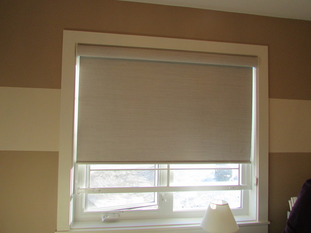 Hunter Douglas Designer Roller Shade Opaque