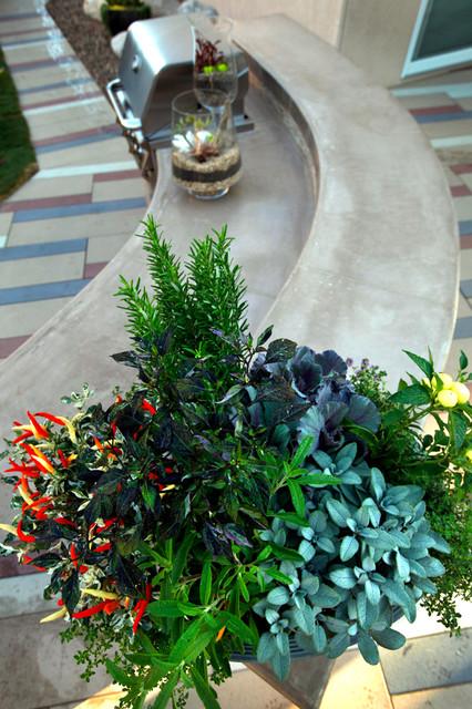 Backyard Hill Landscape Design Ideas, Carlsbad, CA contemporary-landscape