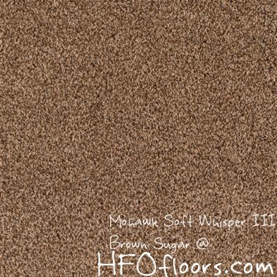 Mohawk Carpet Soft Whisper Iii Carpet Amp Steam Cleaners