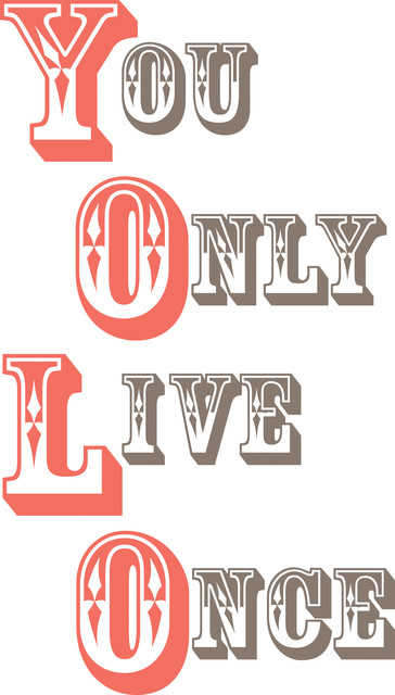 Yolo - You Only Live Once Wall Quote Decals contemporary-wall-decals