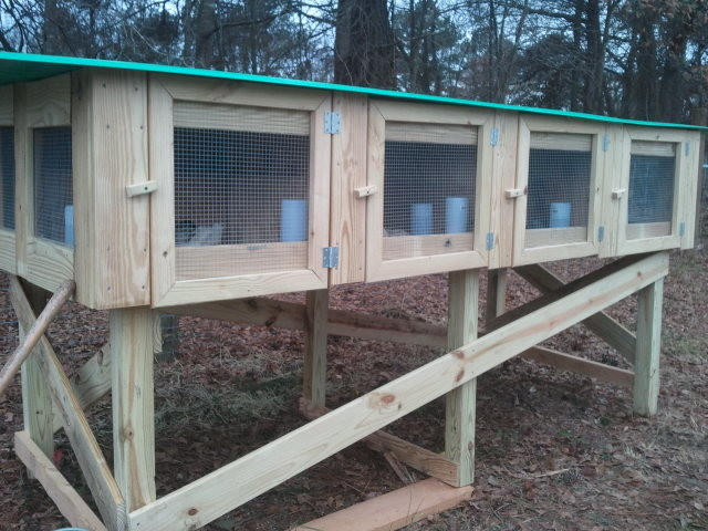 Quail Coop - raleigh - by Totally Legit Construction