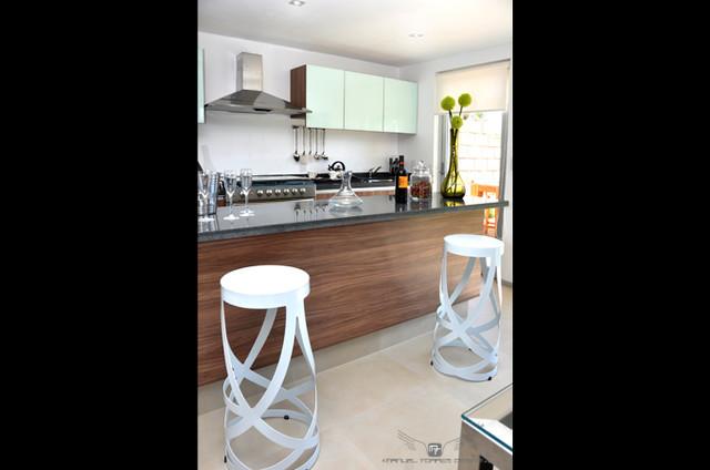 Habitarea Homes contemporary-kitchen