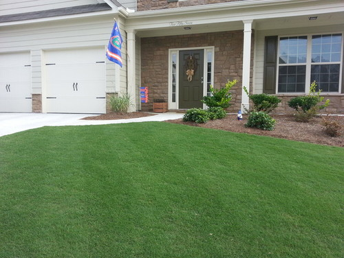 Striping Bermuda In Ga