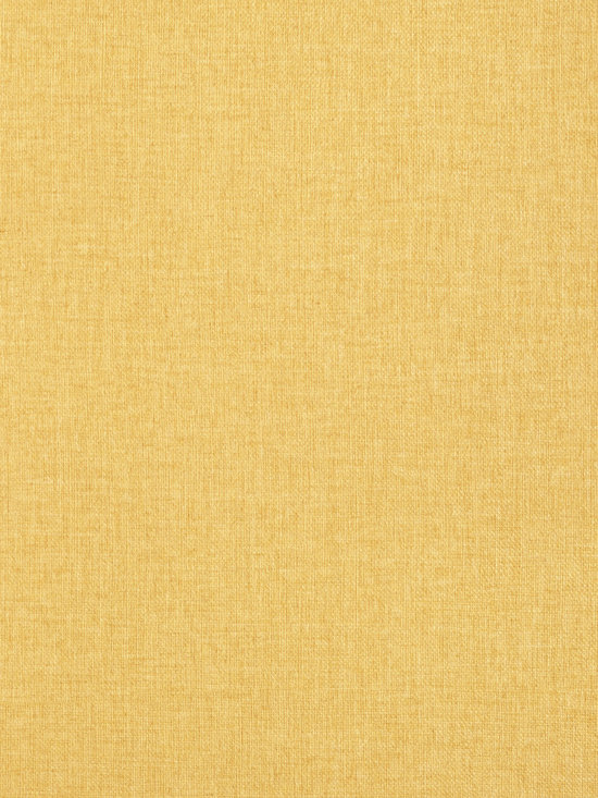 Texture Resource Volume 4 - Flat Shots - Flanders wallpaper in Harvest Gold (T14163) from Thibaut's Texture Resource Volume 4 Collection
