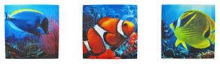 Set of 3 Tropical Fish Printed Canvas Wall Hangings tropical-artwork