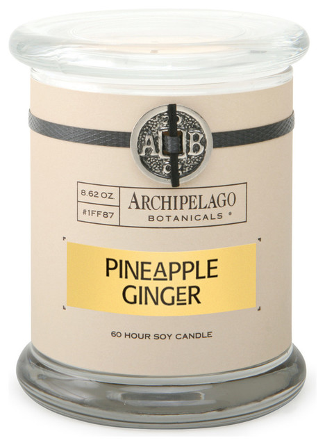 Pineapple Ginger Signature Glass Jar Candle transitional-candles-and-candleholders