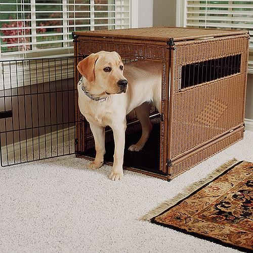 Rattan Pet Crate Dog Crate traditional-dog-beds