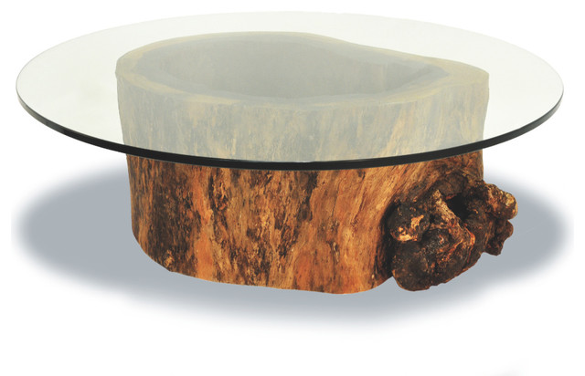 Hollow trunk coffee table round glass top contemporary Tree trunk coffee table glass top