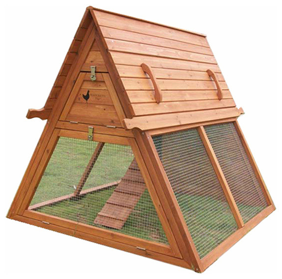 portable chicken coop for 3 to 5 hens modern