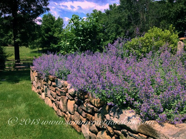 A new england fieldstone wall design traditional for New landscape design