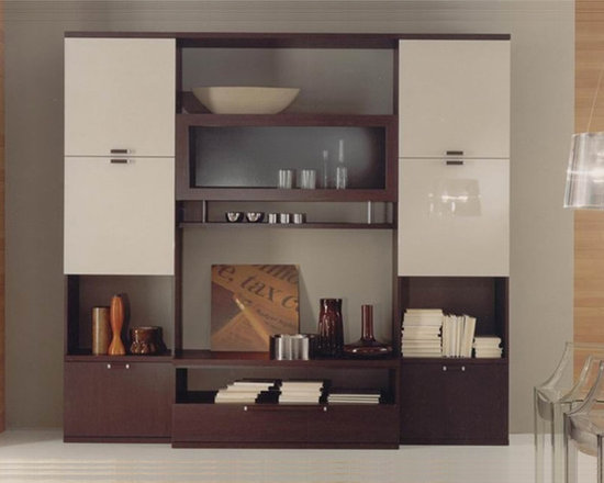 Wall Unit Compongo 501 - $1699.00 - Modern Wall Unit SP-Compogno 501. Well-designed contemporary wall unit with lots of storage space for your media components, books and / or collectibles. Available in Wenge base / Light Gray front finishes.